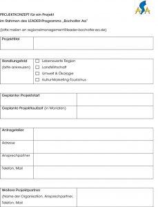 Formular-Projektkonzept-1