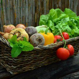 Aufbau eines regionalen Wertschöpfungsraumes im Bereich Ernährungs- und Landwirtschaft im Münsterland