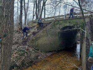 Viadukt_Gehölzentfernung2
